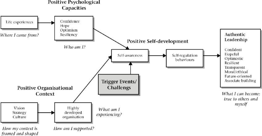 Elements of positive psychological capacities and positive organizational context lead to positive self-development and trigger events/challenges, finally resulting in authentic leadership.